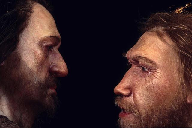 Sapiens y Neandertal